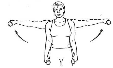lateral abduction of the arm essay Shoulder abduction is important for many sports the middle deltoid and supraspinatus muscles abduct the shoulder in the frontal plane -- moving your arm out to the side away from your body the posterior deltoid, infraspinatus, teres minor and latissimus dorsi muscles abduct the shoulder in the transverse plane -.