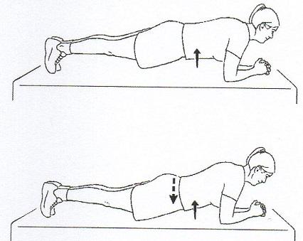plank1