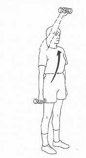 ShoulderFlexion